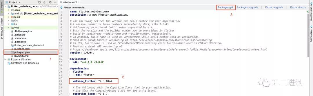 在Flutter 中使用WebView   码农俱乐部- 程序员编程资料和编程